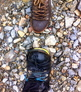 Fix a Merrell leather hiking boot