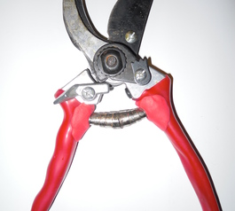 Fix pruning shears