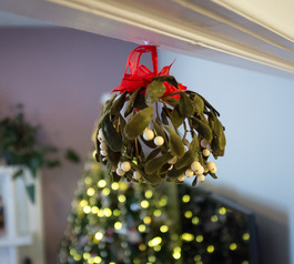 Magnetise your mistletoe for the holidays  (after)