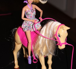 Barbie doll on toy horse