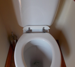 Improve the design of a toilet seat (before)