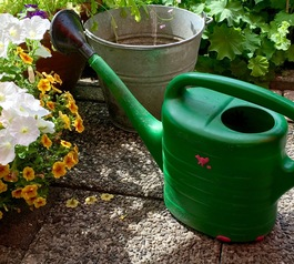 Fix a leaky watering can