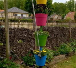 Create a plant watering system (after)