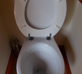 Improve the design of a toilet seat (after)