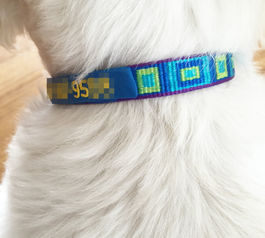Fix a sleek dog collar using Sugru (dog close-up)