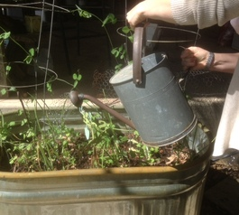 Fix a watering can