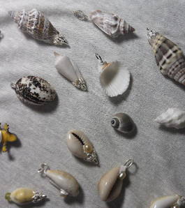 make seashell pendants